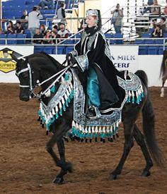 Shekinah Clay Raku and More: Arabian Costume Class-Scottsdale Arabian Horse Show Black Arabian Horse, Beautiful Arabian Horses, Most Beautiful Horses, Majestic Horse, Black Horses, Pretty Horses, Horse Love, Animals Beautiful, Arabian Horse Costume