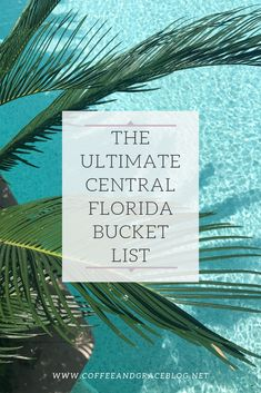 The ultimate central Florida bucket list of family fun activities, attractions, and restaurants. Florida is packed with places to have fun and make memories with your family, here is a list of some of the best. Best Vacation Spots, Florida Vacation, Florida Travel, Florida Beaches, Best Vacations, Forever Florida, Travel Ideas, Travel Inspiration, Lakeland Florida