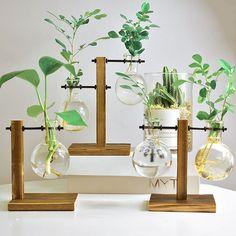 Hydroponic Plant Vases Vintage Flower Pot Transparent Vase Wooden Frame Glass Tabletop Plants Home Bonsai Decor