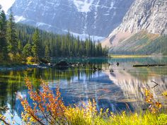 Cavell Lake, Jasper National Park, Canadian Rockies
