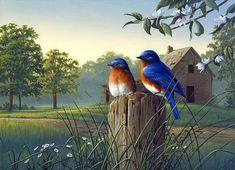 Cuadros Modernos Pinturas : Coloridos Pájaros y Paisajes en la Pintura de James Hautman
