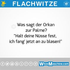 Flachwitze #170