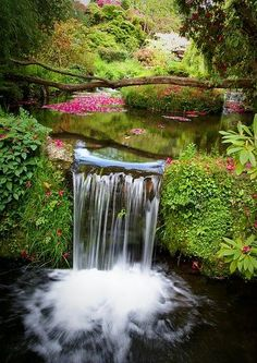 "Waterfall Pool, Devon, England -- What a beautiful, meditative place.reminds me of the cover waterfall for my ""Healing for Healers"" discussion forum! Click the photo and check it out -- post a thread, or offer some help. So pretty Beautiful World, Beautiful Gardens, Beautiful Places, Beautiful Beautiful, Beautiful Scenery, Beautiful Waterfalls, Beautiful Landscapes, Places Around The World, Around The Worlds"