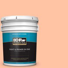 BEHR Premium Plus 5-gal. #P200-3 Tomorrow's Coral Satin Enamel Exterior Paint