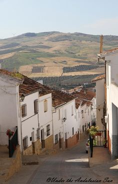 Under the Andalusian Sun food, wine and travel blog: Andalusian sun and sherry country calling!