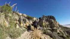 Aventuras a caballo en la playa de Matalascañas
