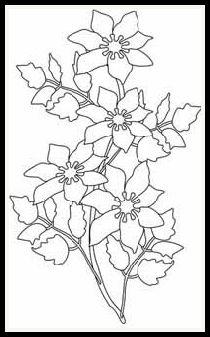 digital stamps   flora Clematis