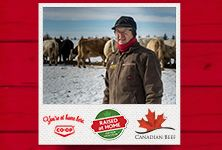 Your local Co-op is proud to support local ranchers. Meet three ranch families from Western Canada in Raised at Home, a three-part series from Co-op and Canada Beef. See how Co-op works with producers to bring quality Western Canadian beef to your table. www.raisedathome.ca/ - Manitoba Western Canada, Support Local, Ranch, Families, Bring It On, Meet, Baseball Cards, Table, Guest Ranch