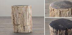 RH's Petrified Wood Stump Collection