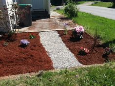 Front garden with roses and rhododendrons.