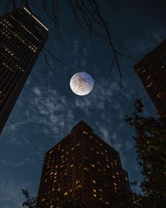 Φεγγάρι πορνό αστέρι Σίδνεϊ