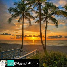 Credit to @costa_hollywood : Beautiful sunrise in hollywood beach...we are sure everyone would want to wake up to this call Meliá Costa Hollywood Sales Office to enquire about our Condo-Hotel at (954) 239-8383.  #luxuryrealestate #meliácostahollywood #vacationhome #realestate #condo #hotels #beach #florida  #hollywoodtapfl #hollywoodfl #hollywoodflorida #hollywoodbeach #downtownhollywood #miami #fortlauderdale #ftlauderdale #aventura #dania #daniabeach #hallandale #hallandalebeach #davie…