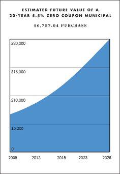 What are Zero Coupon Bonds?