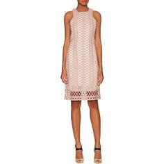 JONATHAN SIMKHAI Women's Tread Lace Sleeveless Dress - Pink - Size S ($589) ❤ liked on Polyvore featuring dresses, pink, pink lace dress, pink evening dresses, holiday dresses, cocktail dresses and lace evening dresses