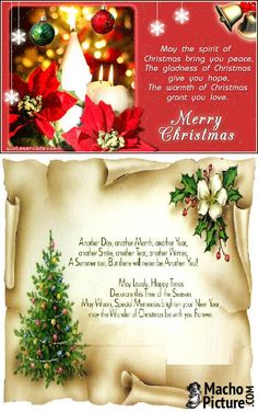 Christmas card quotes christmas quotes for cards funny pictures christmas greeting quotes 3 photo m4hsunfo