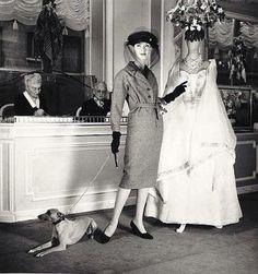 Barbara Mullen in Christian Dior, photo by Louise Dahl-Wolfe, Harper's Bazaar, Feb. 1956