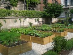 Italian raised garden beds