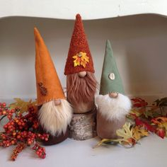 Happy Fall from Flower Valley Gnomes!