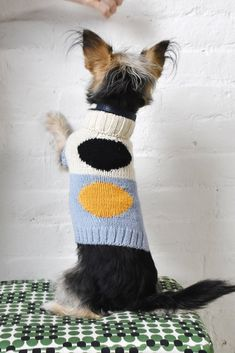 Playing tug-o-war with Fido is suddenly a high stakes game. Dog Jumpers, Cat Hammock, Dog Jacket, Dog Wear, Dog Sweaters, Dog Coats, Cat Face, New Toys, Pet Accessories