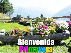 BANCO DE IMAGENES GRATIS: ¡ Bienvenida Primavera ! Postales con Flores y Mensajes