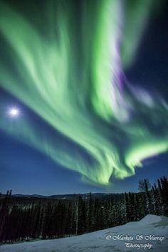 Aurora, Moon  Taken by Marketa S Murray on February 7, 2014 @ Fairbanks - Alaska