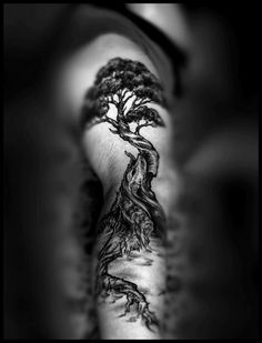 Black And White Tree Tattoo Designs images