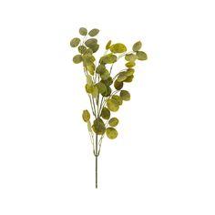 Gren grønne blader   Kremmerhuset #Kremmerhuset #Interior #Inspiration