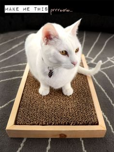 After years of buying cat scratchers, I finally came up with a solution to turn an inexpensive cardboard scratcher into something that works for my cats as well as my decor.