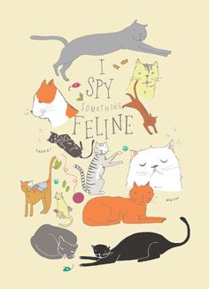 I Spy Something Feline -- Keely from Monkey and the Whale