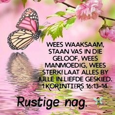 Good Night Blessings, Good Night Wishes, Evening Quotes, Goeie Nag, Christian Messages, Afrikaans, Good Morning Quotes, Poems, Gallery