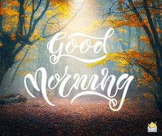 Good morning pic with forest landscape. Lovely Good Morning Images, Beautiful Morning Quotes, Latest Good Morning Images, Good Morning Friends Quotes, Morning Quotes Images, Good Morning Inspiration, Good Morning Picture, Good Morning Flowers, Good Morning Greetings