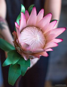 Paper Protea Flower - Lia Griffith Crepe Paper Flowers Tutorial, Paper Flowers Diy, Flower Crafts, Protea Flower, Paper Bouquet, Metallic Paper, Flower Wall Decor, Flower Template, Marker Art