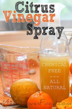 All Natural Citrus Vinegar Spray