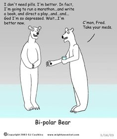 Meet my new power animal: the Bi-polar Bear.