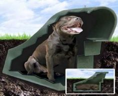 Keep cool with an under ground dog house