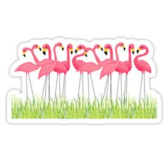 Pink Flamingos Illustration sticker by junkydotcom - Nov 15