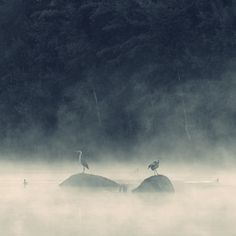 close and distant by Sebastian Luczywo, via 500px