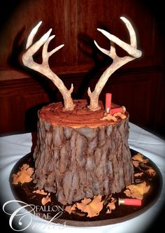 Sculpted cakes created to look like anything you can imagine! Located in Lafayette, LA www.FallonRaeCakes.com