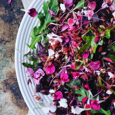 Beetroot, goats cheese and rocket salad with a vinaigrette dressing and topped with micro herbs and edible flowers. Shot and styled by Sacha Kann Styling.