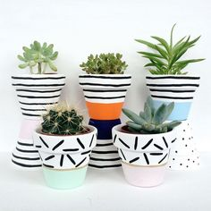 Ideas For Wall Painting Plants Pots Indoor Plant Pots, Mini Plants, Potted Plants, Painted Plant Pots, Painted Flower Pots, Flower Pot Design, Flower Pot Crafts, Small Space Gardening, Garden Planters