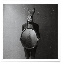 Animals in my room - Rabbit als Premium Poster von Evgeniy Stepanets | JUNIQE
