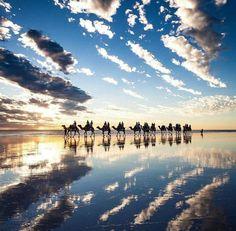 Reflections in Broome, Western Australia 😍 📸 Paul Michael Lightroom, Photoshop, Western Australia, Australia Travel, Broome Australia, Paul Michael, Beautiful Pictures, Beautiful Places, Australia Photos