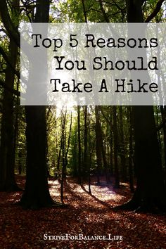 Top 5 Reasons You Should Take A Hike-You can't beat number 4, especially when you have a teenager!