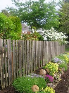 beautiful back yard ideas