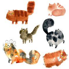 Main cats 3
