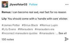 Harry Potter Marauders, Marauders Era, Harry Potter Fandom, Harry Potter World, Harry Otter, Peter Pettigrew, Hogwarts Letter, Wolfstar, Remus Lupin