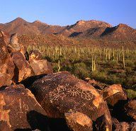 Things to do in Tucson, USA - Lonely Planet