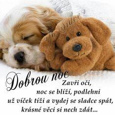 Good Night, Good Morning, Weird Words, Motto, Teddy Bear, Nighty Night, Buen Dia, Bonjour, Bom Dia