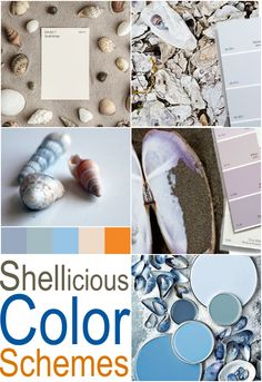 Coastal Paint Colors, Coastal Decor, Bedroom Art, Kids Bedroom, Seashell Painting, Dream Beach Houses, Paint Color Schemes, Interior House Colors, Shell Crafts