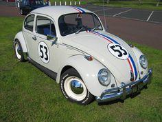 Love VW Bugs!